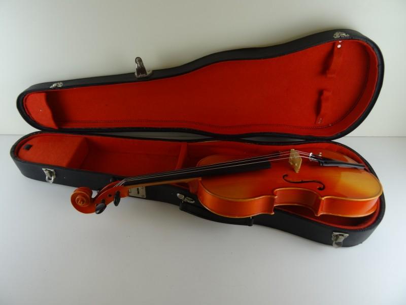 Viool in koffer