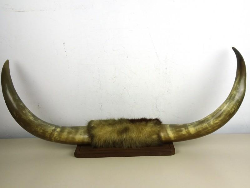 Kunst in België (1945/2000) - 2 delen in foedraal - 2001