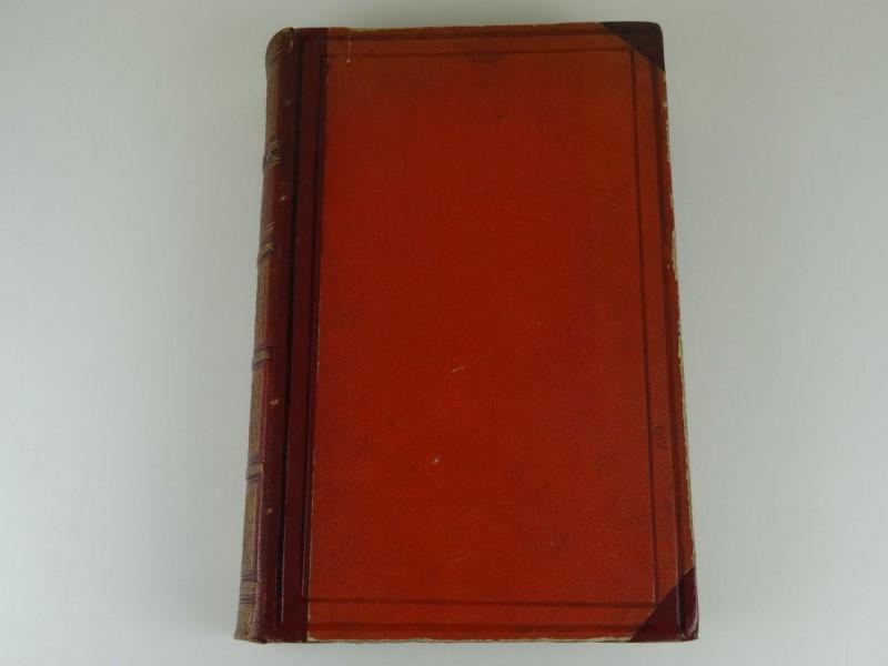 Pieter Vergers: De Prinsen van Oranje-Nassau in Nederland 1874