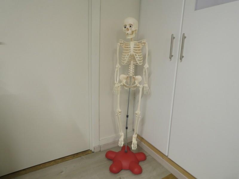 Billie, het skelet