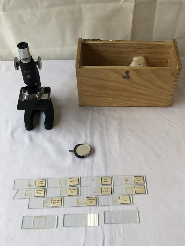 Kleine Microscoop Essex