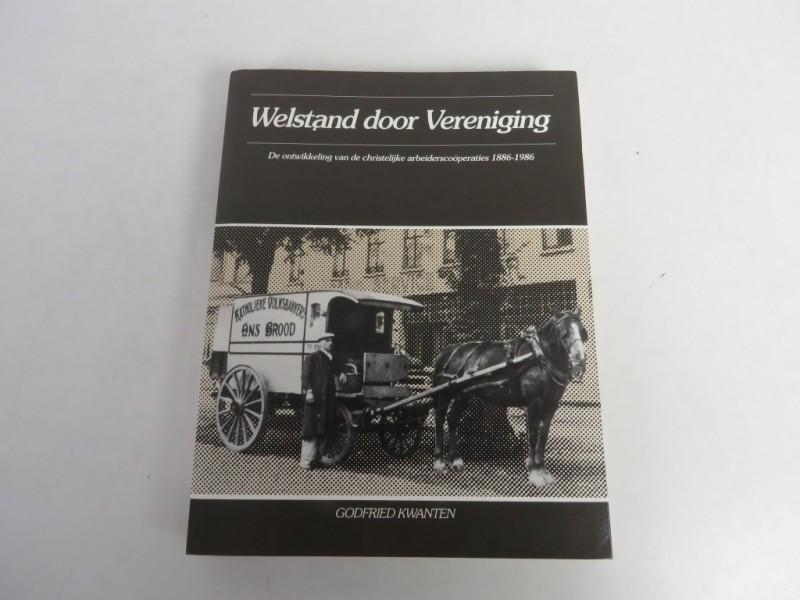 Boek - Welstand door vereniging