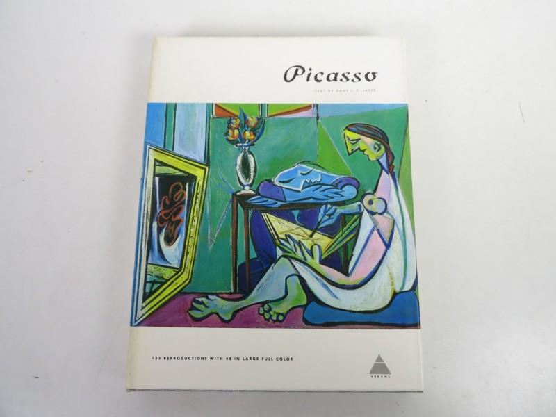 Boek - Picasso