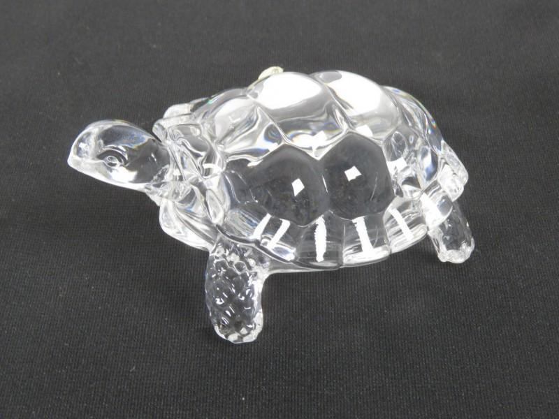Kristallen schildpad gemerkt Cristal 'd Arques