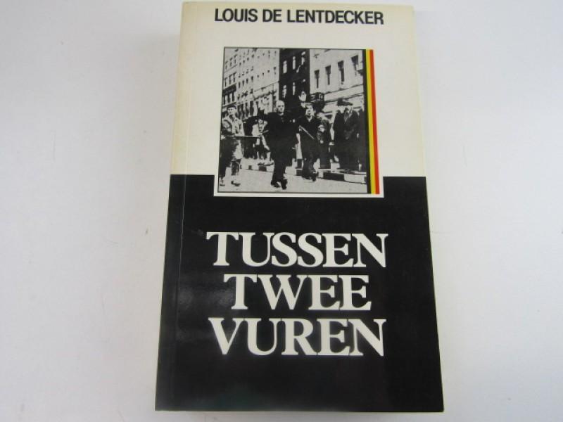 Boek - Gemeentelijke kunstschatten