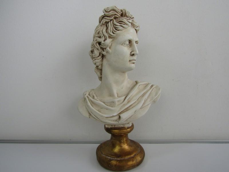 Buste: Apollo Belvedere