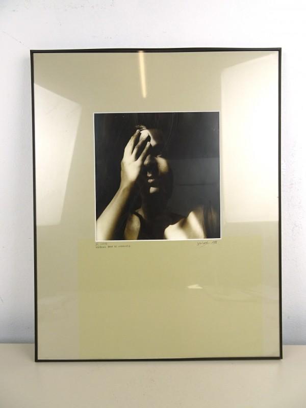 """Foto """"Verblind door de waarheid"""" (J.M. Swinnen)"""