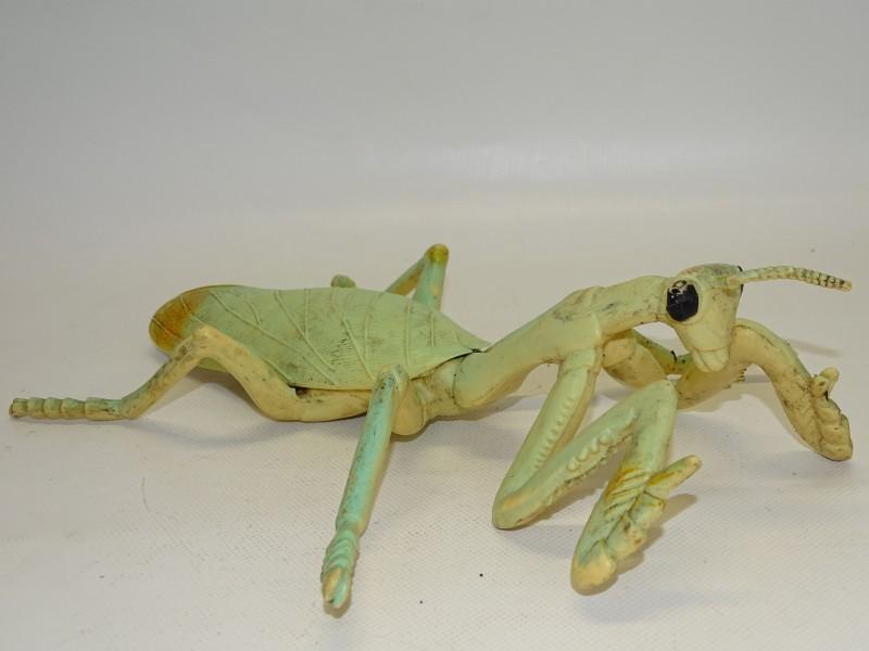 Bidsprinkhaan / Praying Mantis, 1997