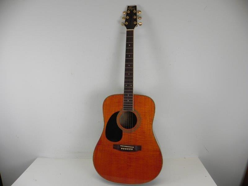 Alliance VP-06D-TMA gitaar met bijhorende tas