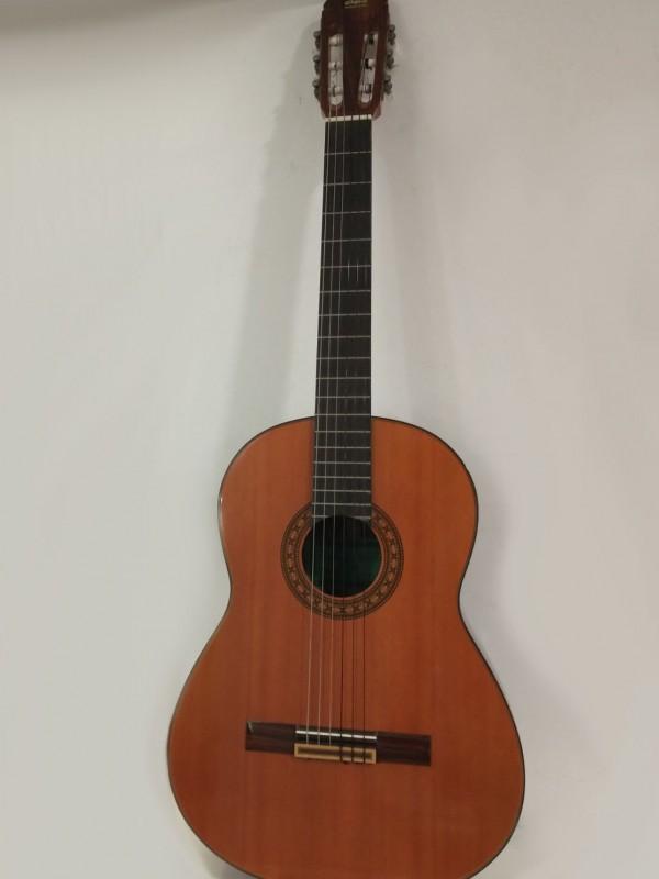 Takeharu klassieke gitaar, model: GT-2OO