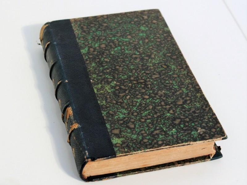 Bible De L'Humanité 1885