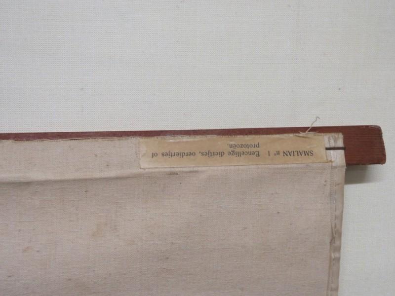 Schoolkaart - Levermos